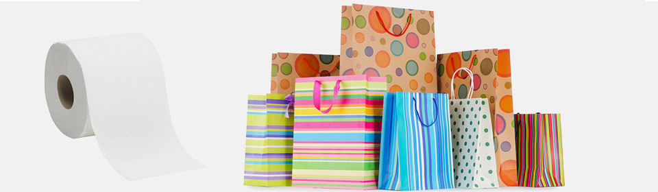 Paper Carry Bags Manufacturers in Coimbatore